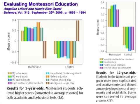 Montessori, Why Not?