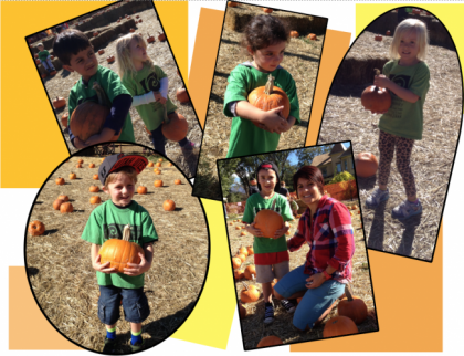 b2ap3_thumbnail_Picking-Pumpkins.png