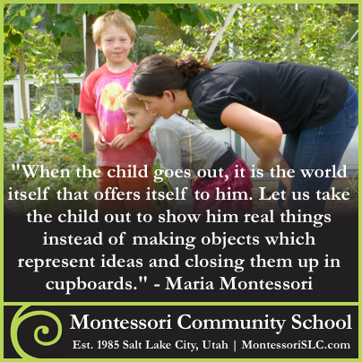 MCS Parent Testimonial